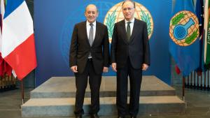 OPCW Director-General, H.E. Mr Fernando Arias, and the Minister of Europe and Foreign Affairs of France, Mr Jean-Yves Le Drian, meeting at the OPCW Headquarters in The Hague