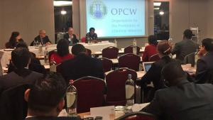 OPCW Director-General Briefs Permanent Representatives Based Outside of The Hague