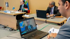 OPCW Director-General, H.E. Mr Fernando Arias and participants at Africa Programme's Steering Committee Inaugural Meeting Online