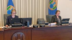 OPCW Confidentiality Commission Elects New Chairperson